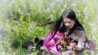 春季赏花去哪里?