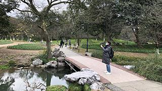 西湖景区各公园将有序开放