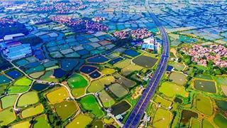 农村市场加速发展