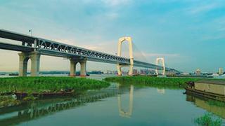 芜湖长江三桥公路桥通车