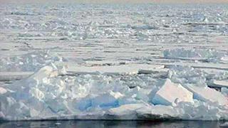中国科学家参与北极科考