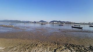 钱塘江水位将达近四年最低